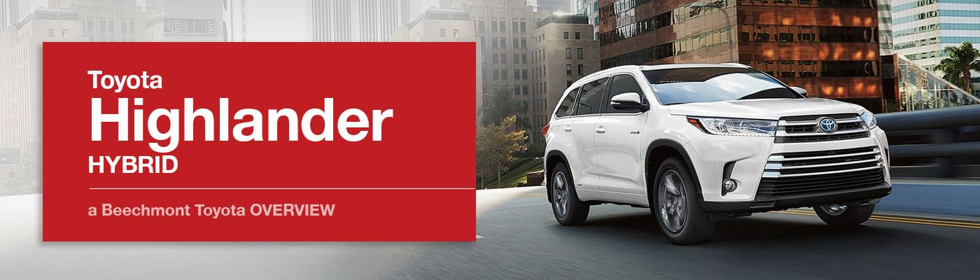 Toyota Highlander Hybrid Model Overview at Beechmont Toyota