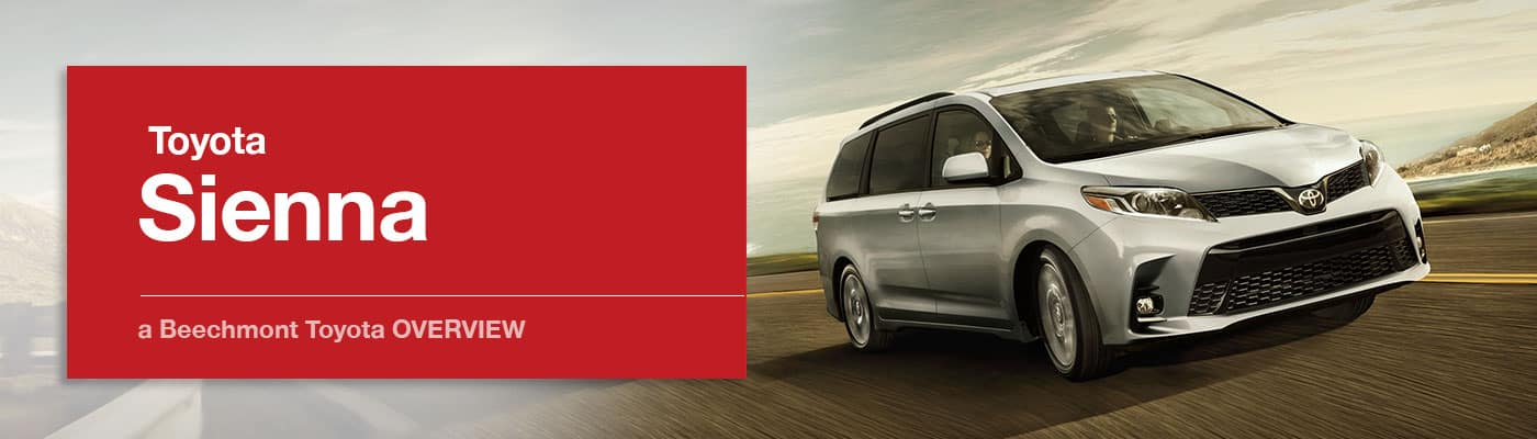 Toyota Sienna Model Overview at Beechmont Toyota