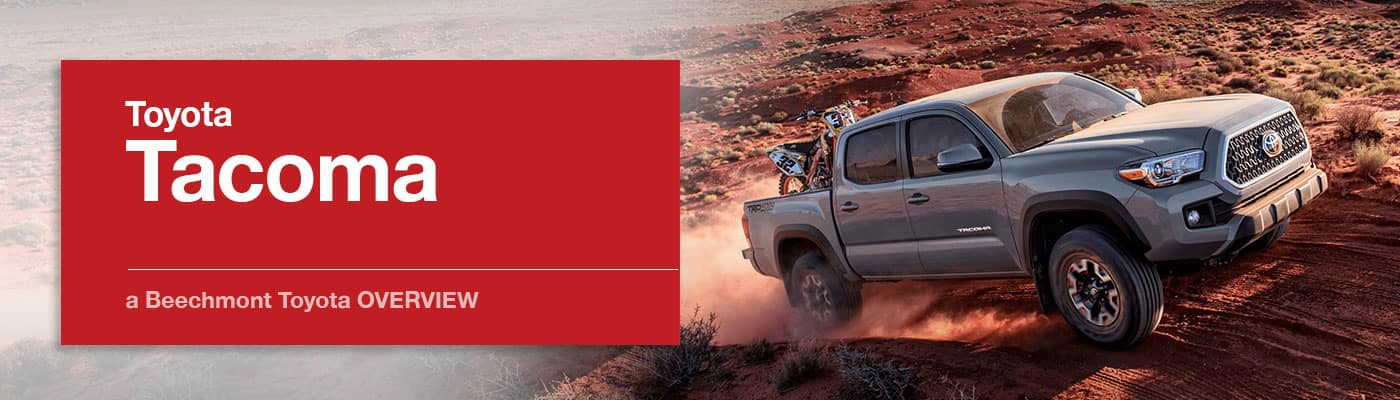 Toyota Tacoma Model Overview at Beechmont Toyota