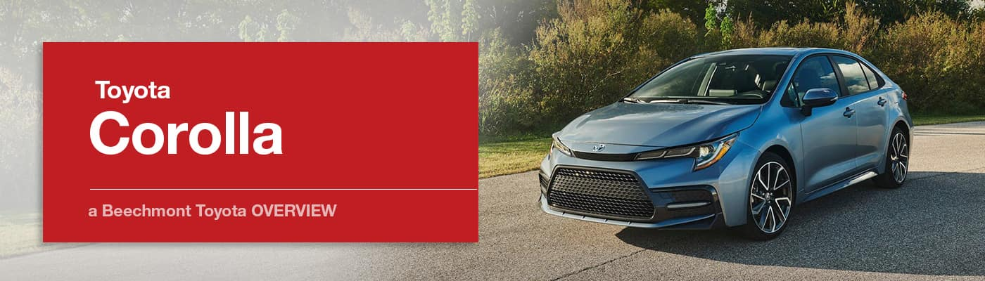 Toyota Corolla Model Overview at Beechmont Toyota