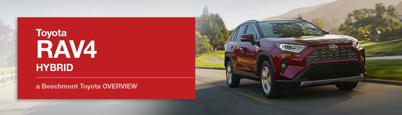 Toyota RAV4 Hybrid Model Overview at Beechmont Toyota