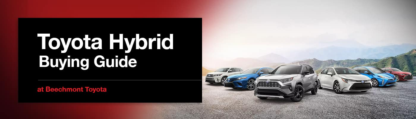 Toyota Hybrid Buying Guide at Beechmont Toyota