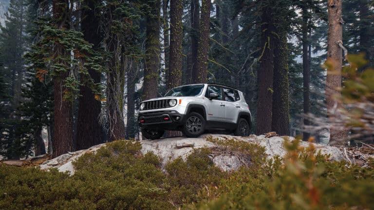 2021 Jeep Renegade Exterior Woods