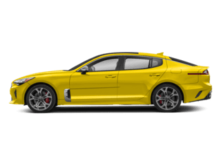 yellow stinger