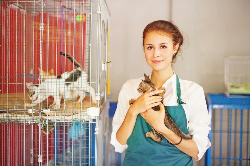 Volunteering at Humane Society