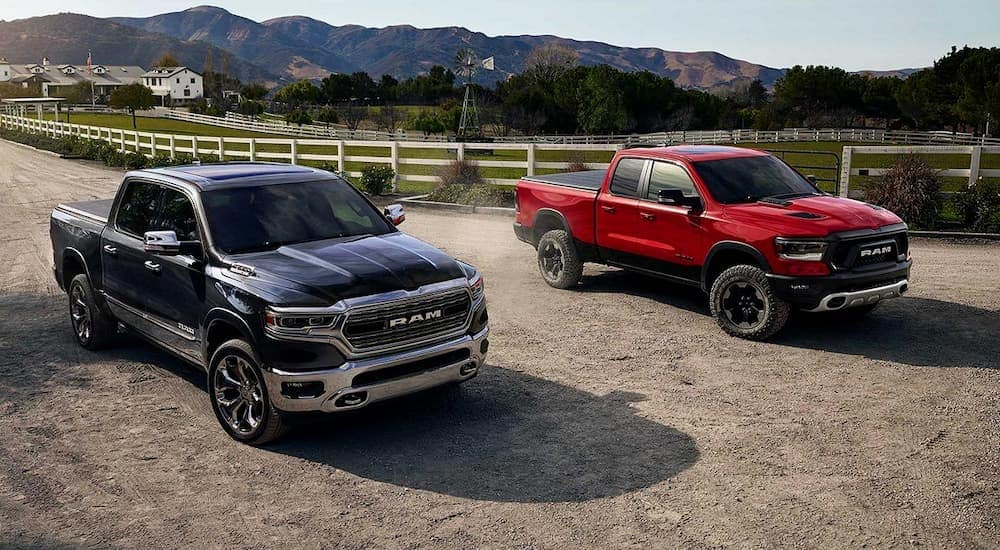 A grey and a red 2019 RAM 1500, popular among RAM trucks, are parked on a farm driveway.