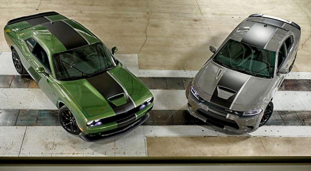 A green 2019 Dodge Challenger is next to a grey Charger shown from above at a Dodge dealership.