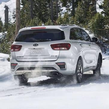 2019 Kia Sorento rear view