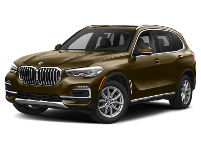 2019 BMW X5 in brown