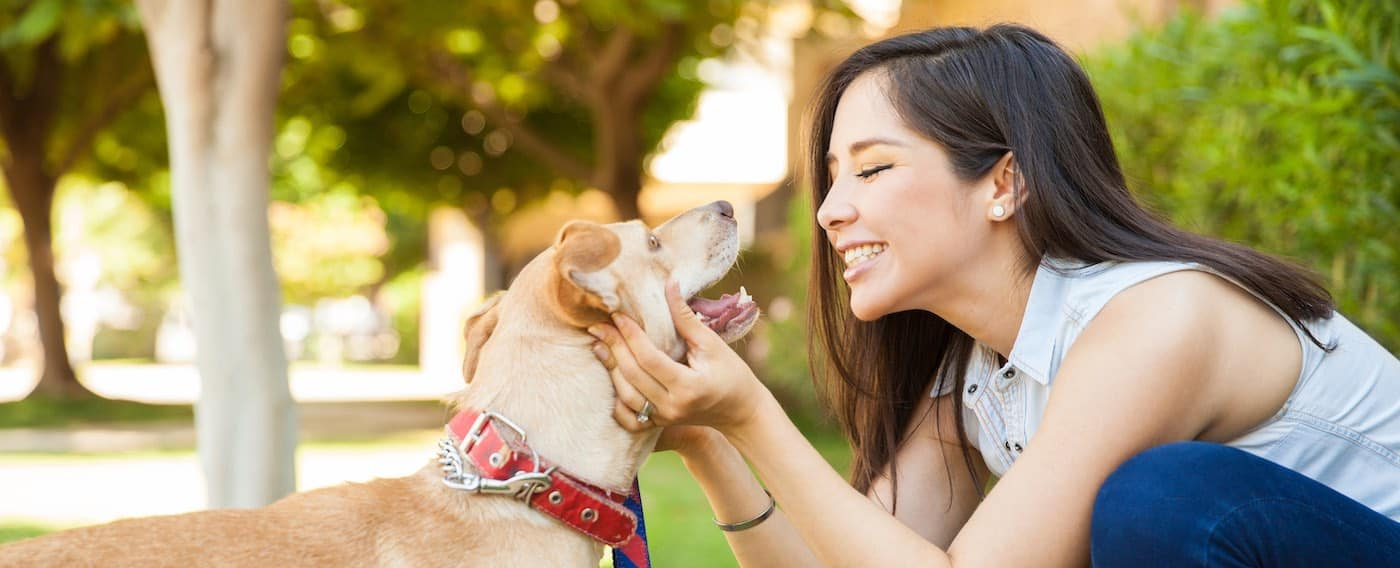 Profile view of a young woman holding her dog face to face at dog park
