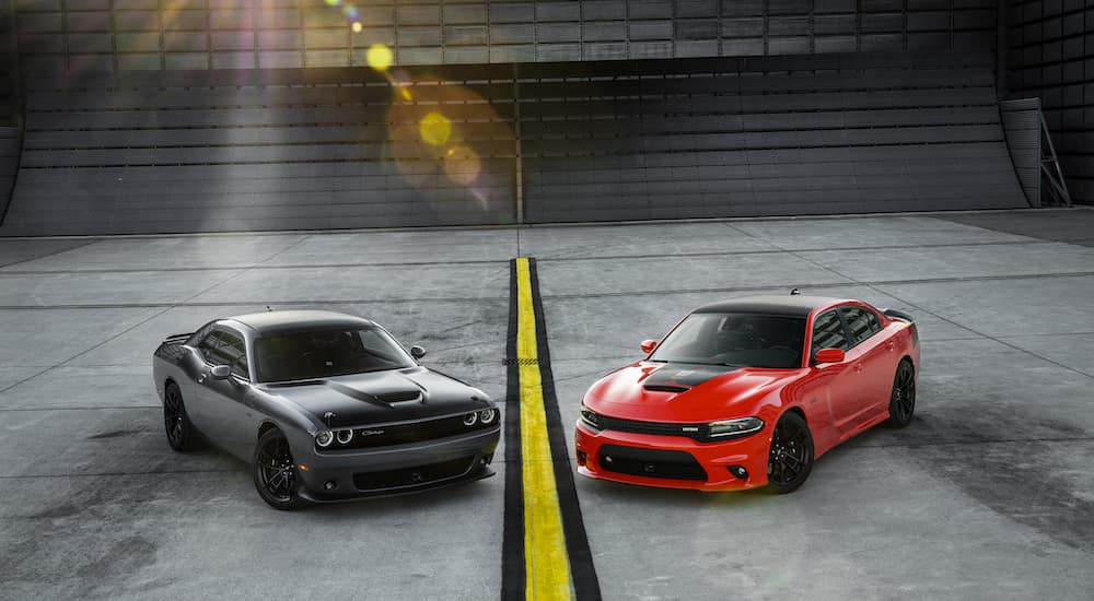 High performance red and grey 2019 Dodge cars separated by a yellow line
