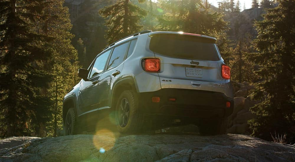 A silver 2019 Jeep Renegade is off-roading in the woods after leaving a Jeep dealership.