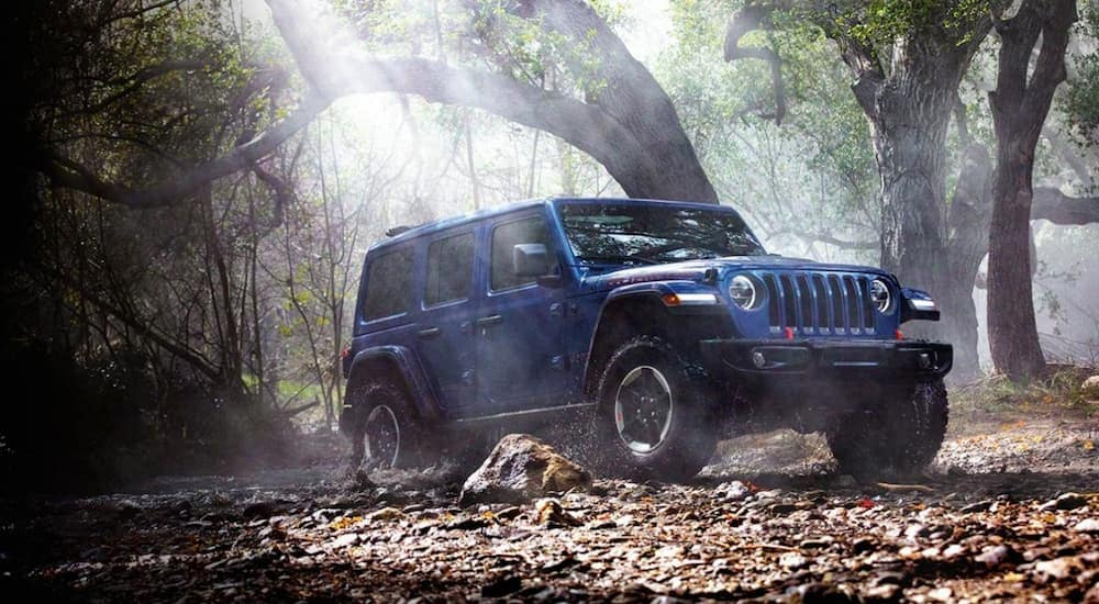 A blue 2020 Jeep Wrangler is off-roading in the woods near Costa Mesa, CA.