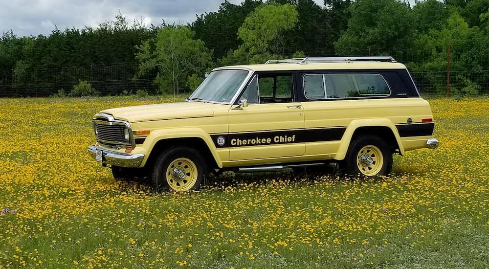 A yellow 1979 Jeep Cherokee is parked in a field with wildflowers.