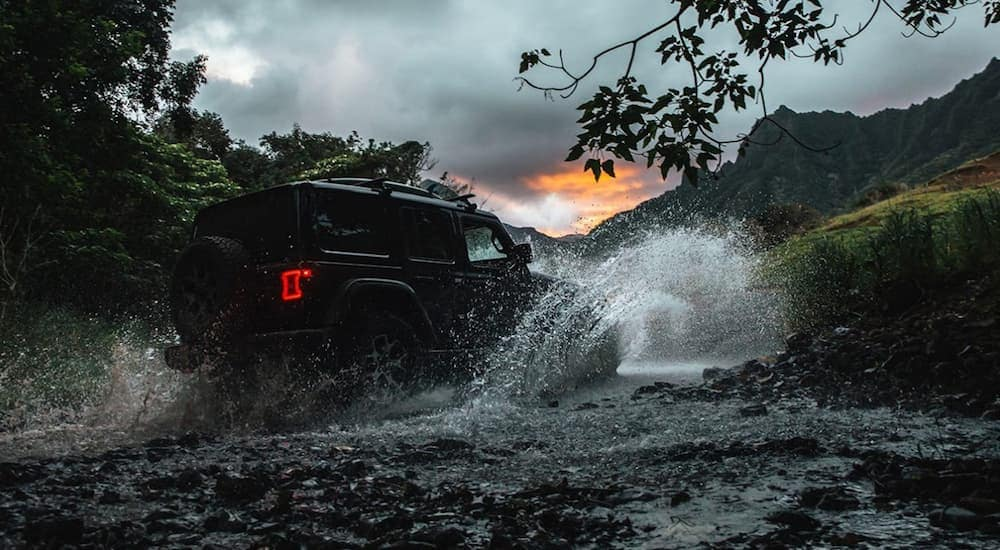 A black 2020 Jeep Wrangler, which is a popular option when you search Jeep dealership near me, is driving in the woods through a large puddle.