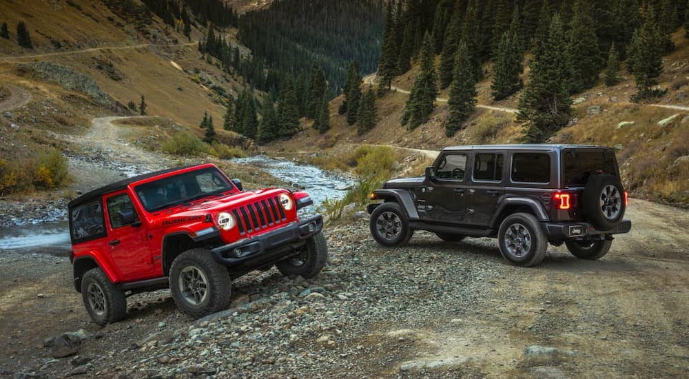 A red 2-door and a grey 4-door 2020 Jeep Wranglers, which shows the true difference of the Jeep Wrangler vs Jeep Wrangler Unlimited, are parked next to a small stream in the woods.