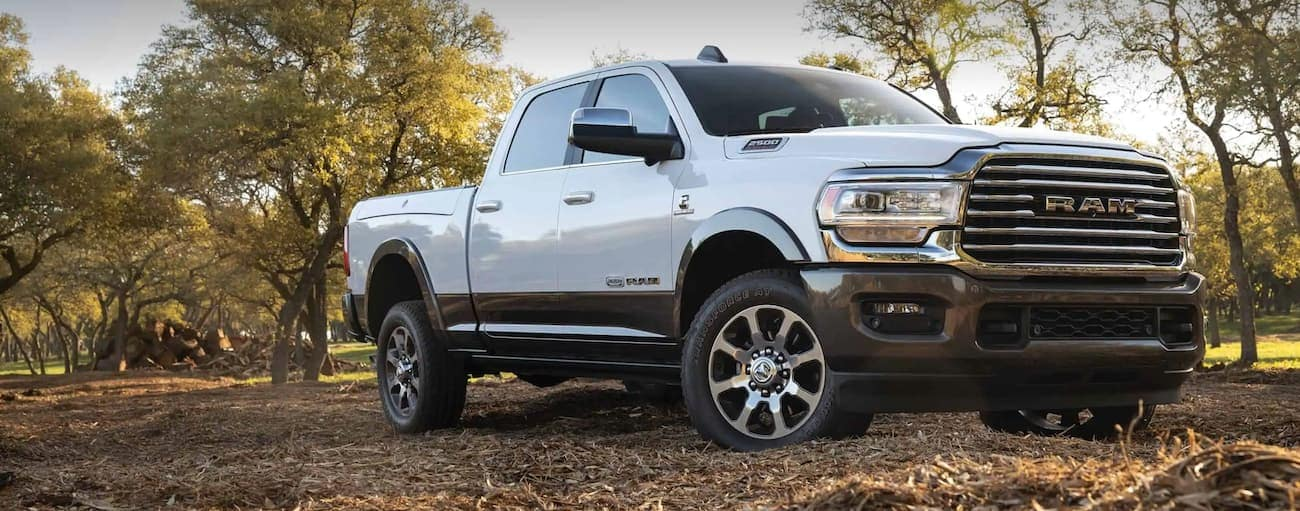 A white 2020 Ram 2500 is parked off-road in front of trees near Costa Mesa, CA.