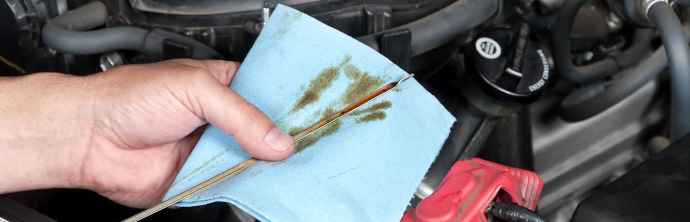 Mechanic checking oil level of car