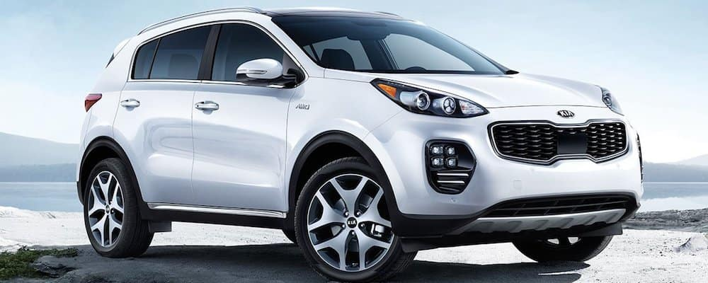 2019 sportage showcase