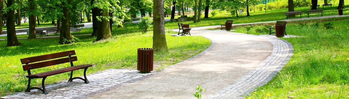 beautiful park in springtime